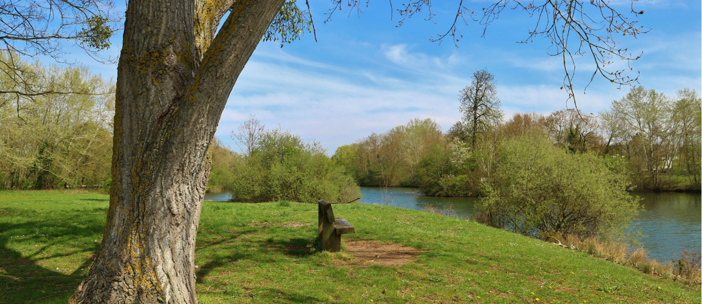 Randonnee Saint-Michel-sur-Orge Parc de Lormoy